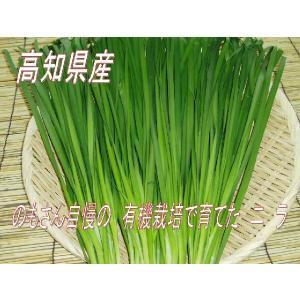 ニラ 科学肥料を使用していない 減、減農薬