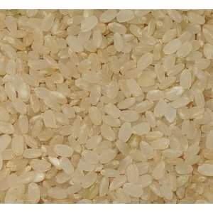 熊本県産ヒノヒカリ 清和湧水米(五分米) 5kg 農薬不使用 九州産|yasaimura