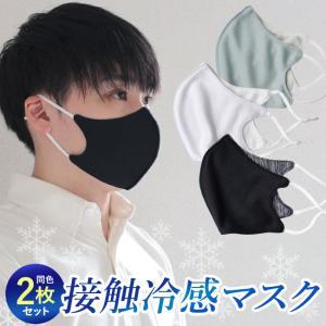 マスク 冷感マスク 2枚セット 夏用 洗える メッシュ 抗菌 ポイント消化 yasashii-kurashi