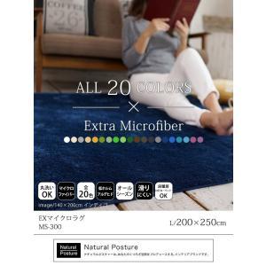 ラグ 200×250cm 約 3畳 ラグマット マイクロファイバー EXマイクロラグ 洗える リビングマット ホットカーペット・こたつ対応 送料無料|yasashii-kurashi