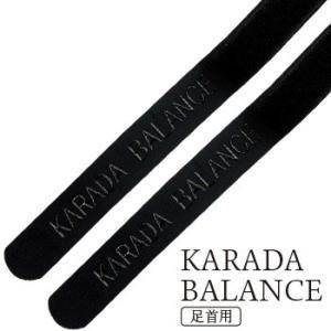 KARADA BALANCE(カラダバランス) 足首用・2本セット 『配送サイズ60』|yasashisa