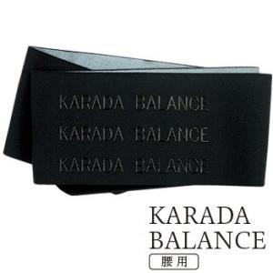 カラダバランス・腰用『配送サイズ60』|yasashisa