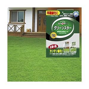 グリーンスター 芝生育成シート(1シート) (芝生 種 芝 種 芝生の種 芝生シート 芝生養生 芝生種子)|yasashisa