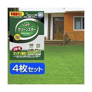 グリーンスター 芝生育成シート(4シート) (芝生 種 芝 種 芝生の種 芝生シート 芝生養生 芝生種子)|yasashisa