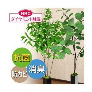 FIAN(フィアン)ダイヤモンド触媒人工観葉植物|yasashisa
