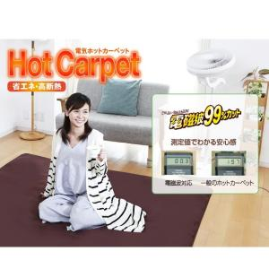 (特別価格) 電磁波カット ホットカーペット 2畳 カバー付き ( 日本製 ZENKEN ゼンケン ホットマット 電気ホットカーペット 2畳タイプ ZC-20KR 即日発送 )|yasashisa|02