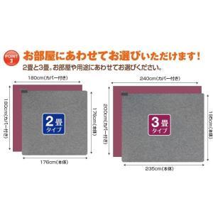 (特別価格) 電磁波カット ホットカーペット 2畳 カバー付き ( 日本製 ZENKEN ゼンケン ホットマット 電気ホットカーペット 2畳タイプ ZC-20KR 即日発送 )|yasashisa|05