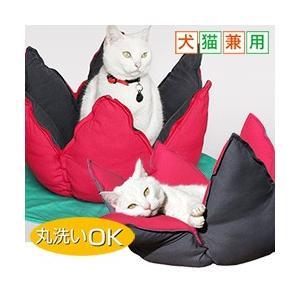 犬猫兼用ベッド ネルンボ (ペット ハウス クッション ベッド 犬 猫 犬小屋 ドッグハウス キャットハウス おしゃれ 送料無料 )|yasashisa