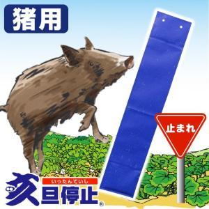 亥旦停止 猪用50枚 ( イノシシ対策 イノシシ撃退 いったんていし カプサイシン 唐辛子 忌避剤 猪対策 作物 侵入 防止 イノシシ対策用品 フェンス ネット )|yasashisa