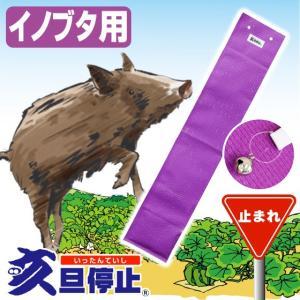 田・畑の作物を猪(イノブタ)から守る。 猪の被害、対策に「亥旦停止」いったんていし 猪豚(いのぶた)用50枚|yasashisa