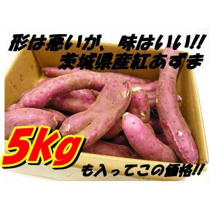 さつまいも(紅あずま) 5kg箱 訳アリ 海風を浴びたあま〜いおいも 茨城県産