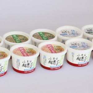 果物アイス2種&定番人気商品セット(10個入)|yasu-tomi