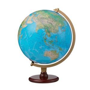 リプルーグル 地球儀(カーライル型 ブルーオーシャン地図) 86573|yasudaclub
