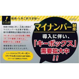 ソニック SONIC キーボックス 48個吊り 暗証番号 テンキー式 KS-7091|yasudaclub