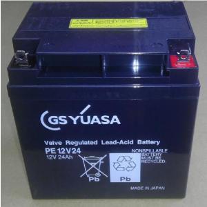 PE12V24:GSユアサバッテリー(PE12V24-B1)