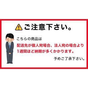 ハニー わたがし 100人分セット A 無地袋タイプ|yasukichi|03