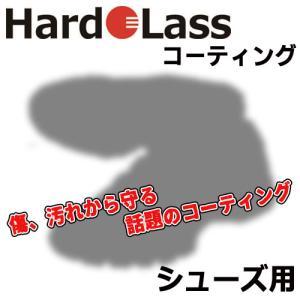 Hardolass [ハドラス] ガラスコーティング 【シューズ用】