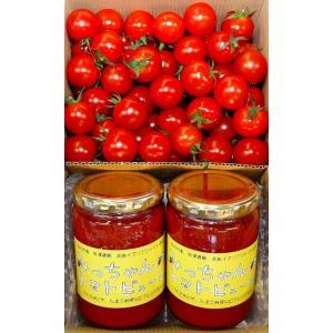 S〜Lサイズの中からバラ詰にしたトマトをお送りいたします。 収穫した日に発送しますので新鮮なミニトマ...