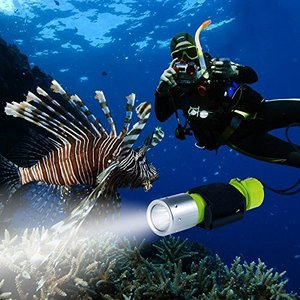 BlueFire ダイビングライト 1100LM Cree XM-L2 IPX8防水 LEDライト 水中懐中電灯 ダイビング懐中電灯 潜水 ハンドストラ ybd