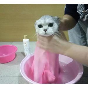 猫用みのむし袋 脱走防止 お風呂 猫用ネット 猫 シャンプー 爪切り 耳掃除 Aタイプ