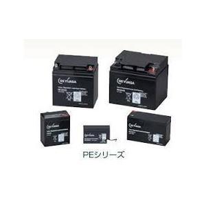 PE12V24B1 GSユアサ GSユアサ製 電池(標準タイプ)12V/24Ah