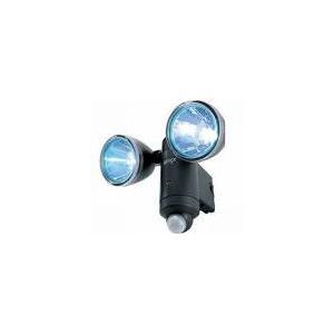4954849500206 S-20L RITEX  1Wx2 LEDソーラーライト  ムサシ|ydirect