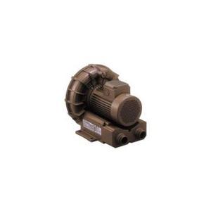 VFZ601A テラル リングブロワ 三相標準型|ydirect
