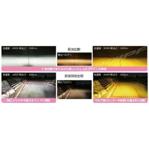 IPF 55DFLB フォグランプ HB4 バルブ 2色切替 6500K⇔2800K 2500lm 12V/24V兼用12W|yellowhat|04