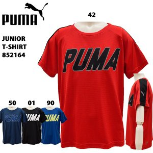 【メール便送料200円】プーマ puma ジュニアTシャツ GYM GRAPHIC ジムグラフィック SS T 852164|yf-ing