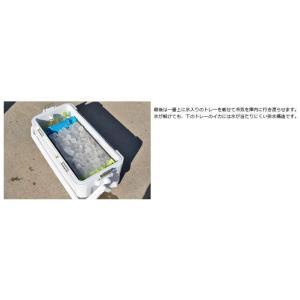 シマノ 冷えキントレー M 3枚セット|yfto|10