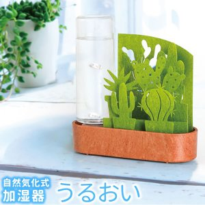 セキスイ 自然気化式ECO加湿器 うるおい ちいさな庭 グリーン・サボテンの画像