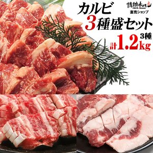 焼肉セット バーベキュー  肉 カルビ三昧 カルビ3種盛り 3-4人前 計1.2kg 送料無料 BBQ|yhjonetsu