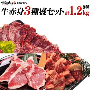 焼肉セット バーベキュー  肉 牛赤身3種盛り ハラミ ヘレロース ジューシーカルビ 3-4人前 計1.2kg 送料無料 BBQ|yhjonetsu