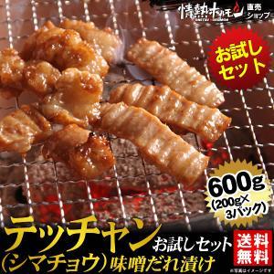 焼肉セット 肉 バーベキューセット テッチャン シマチョウ 味噌だれ漬けお試しセット 600g 送料無料 BBQ|yhjonetsu