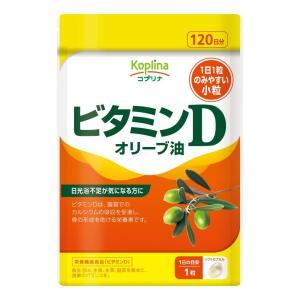 〔まとめ買い対象商品〕 ビタミンD 120粒 1袋120日分 日光浴不足サプリの商品画像|ナビ