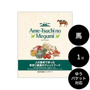 あめつちの恵み 馬肉 通常パック(1袋)|ykozakka