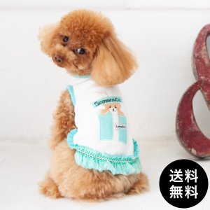 LunaBlue(ルナブルー)SNIFFANY BEAR GIFT BOX DRESS XXS, XS, S, M, L, XLサイズ 送料無料|ykozakka