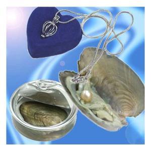 缶パールネックレス 幸せを呼ぶ自分だけの真珠(ゆうパケット、代引不可、送料別商品)|yleciel