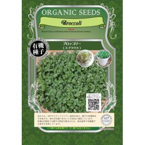 有機種子 ブロッコリー ( スプラウト )  固定種 中袋 60g 【ポスト投函便対象】|ymaguu