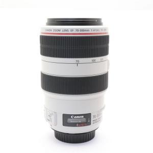 《良品》Canon EF70-300mm F4-5.6L IS USM|ymapcamera
