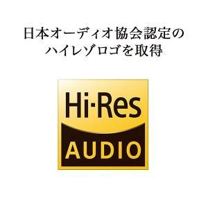 campino audio ハイレゾイヤホン【...の詳細画像5