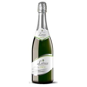ラルス スプマンテ ドゥミセック 750ml (イタリア/エミリア・ロマーニャ/スパークリングワイン/006918) モンテ yo-sake