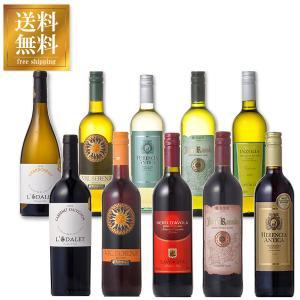 ワインセット 金賞受賞入り デイリーワイン 赤白 飲みくらべ10本セット 送料無料※(本州のみ) あすつく (ケース販売)|yo-sake