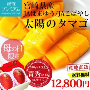 マンゴー 宮崎マンゴー 太陽のタマゴ 青秀 2Lサイズ 35...