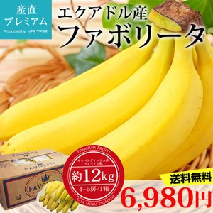バナナ エクアドル産 ファボリータ 1箱(4〜5房)