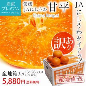 みかん 甘平 訳あり 箱買い 約5kg L〜3Lサイズ 15〜26玉 愛媛県