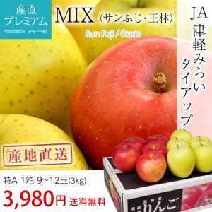 りんご サンふじ 青森県 リンゴ 3kg 特A 9〜12玉 ...