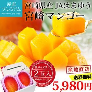 マンゴー 完熟宮崎マンゴー 母の日ギフト 3Lサイズ以上 4...