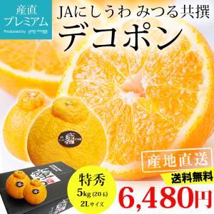 デコポン 糖度14度以上保証 贈答用 愛媛県 蜜る みかん ...