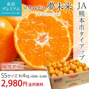 みかん 夢未来 早生みかん 4kg SSサイズ 48〜64個 熊本 送料無料 産地直送 市場出荷